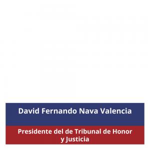 david_fernando2